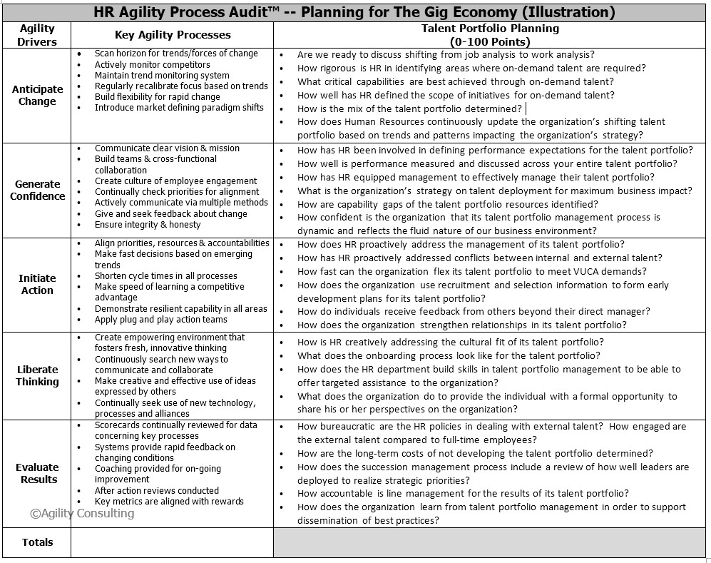 HR Process Audit -- Talent Portfolio Planning .jpg