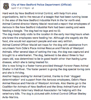 Amid community uproar on lack of answers and still asking for dogs whereabouts New Bedford Police Issue A Statement . They clearly state dog is at Forever Paws