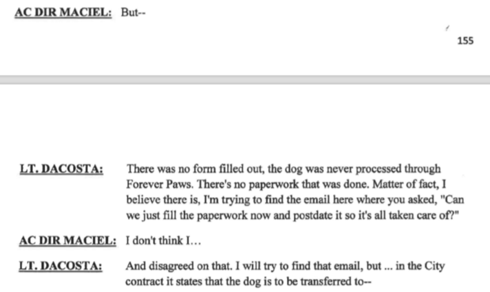 "Maciel gets caught off and corrected there was zero paperwork on this dog and Forever Paws from April 4th till 28th. Even mentioned wanting to ""post date paperwork ""."