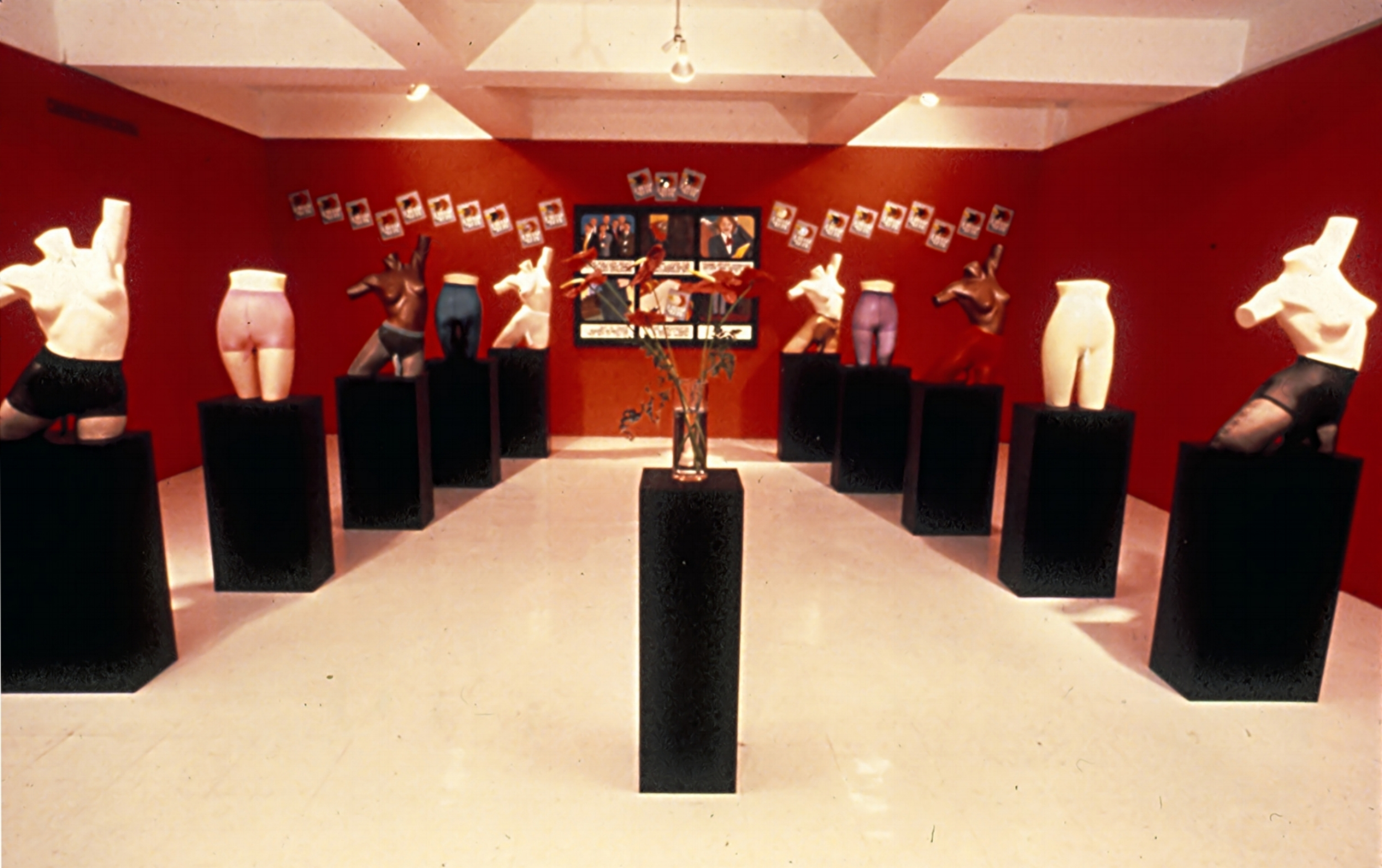 Secret Penis Installation 1987