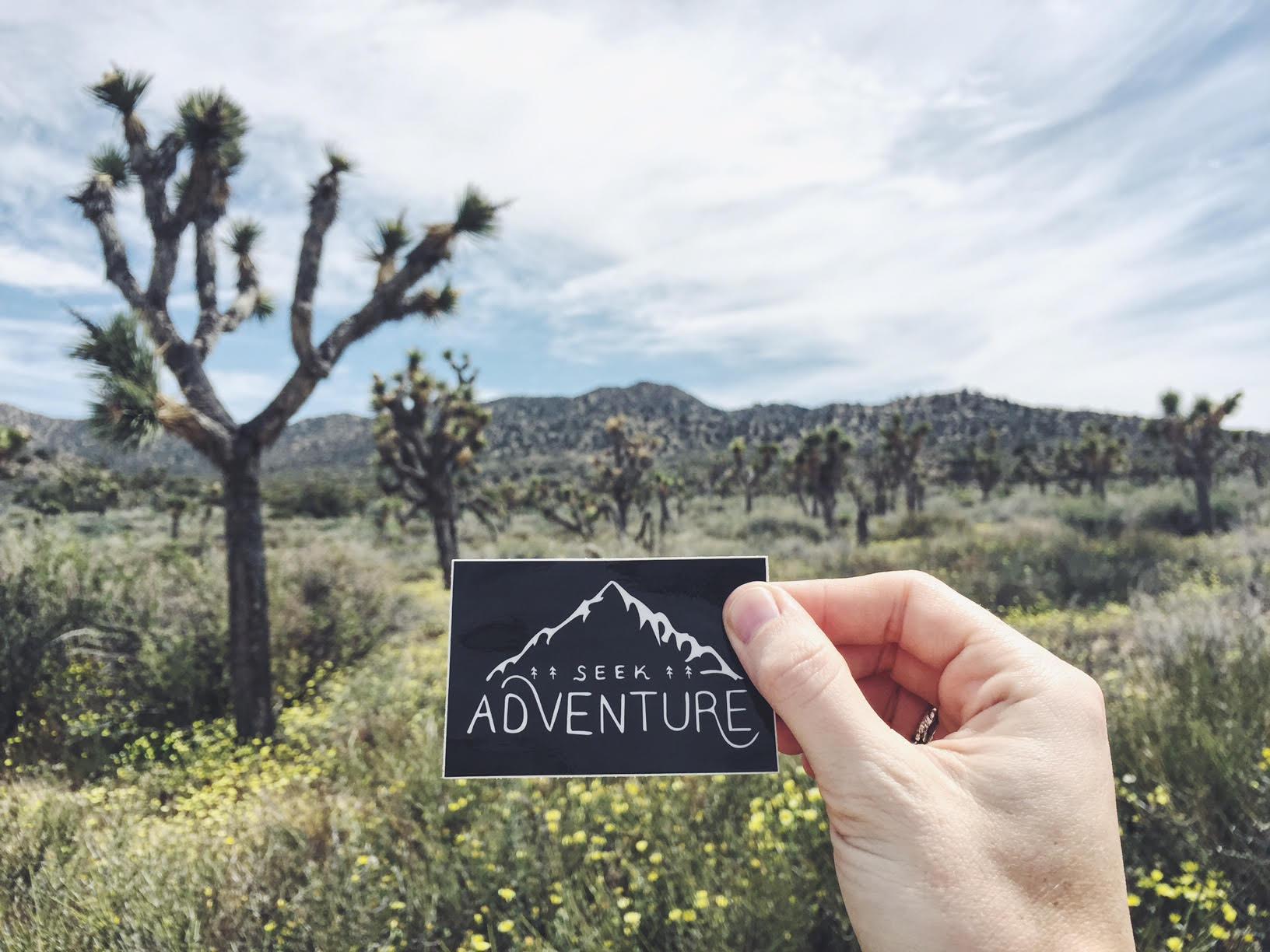 Seek Adventure in Joshua Tree National Park - the Badon Hill Blog