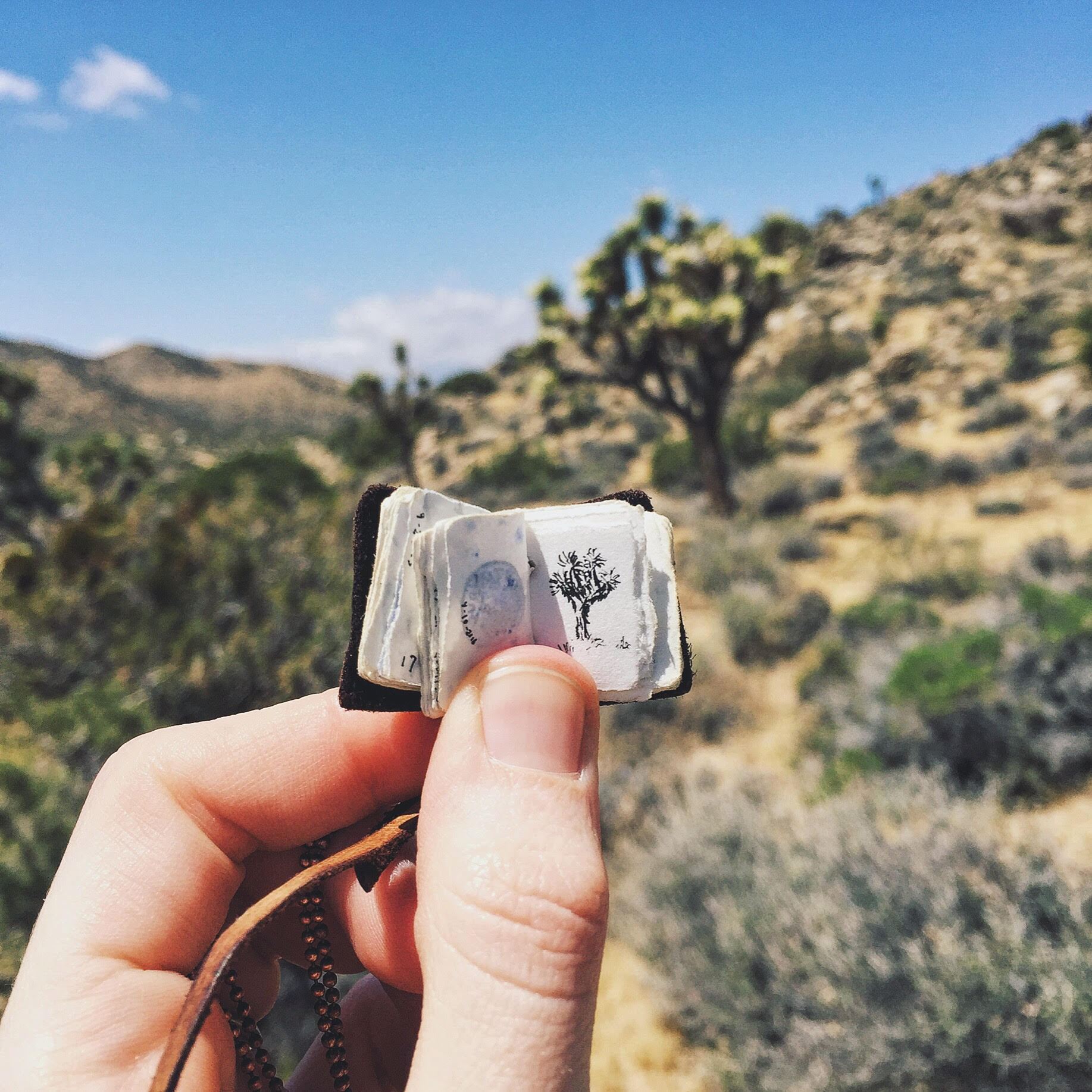 A quick and tiny trail sketch at Joshua Tree National Park