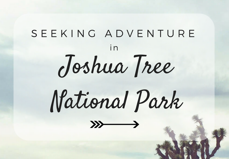 Seeking Adventure in Joshua Tree National Park