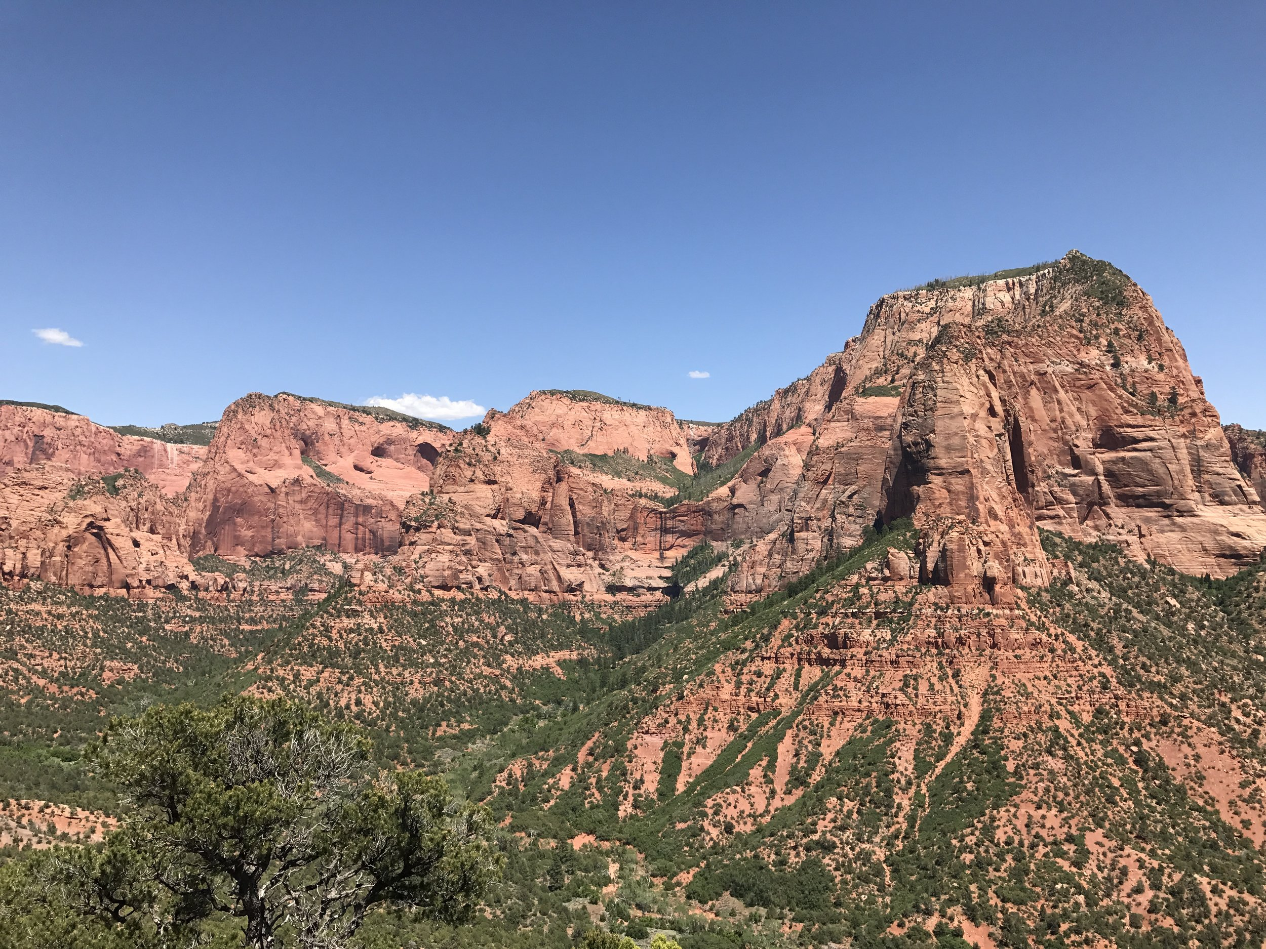 View of the Finger Canyons from the Timber Creek Overlook