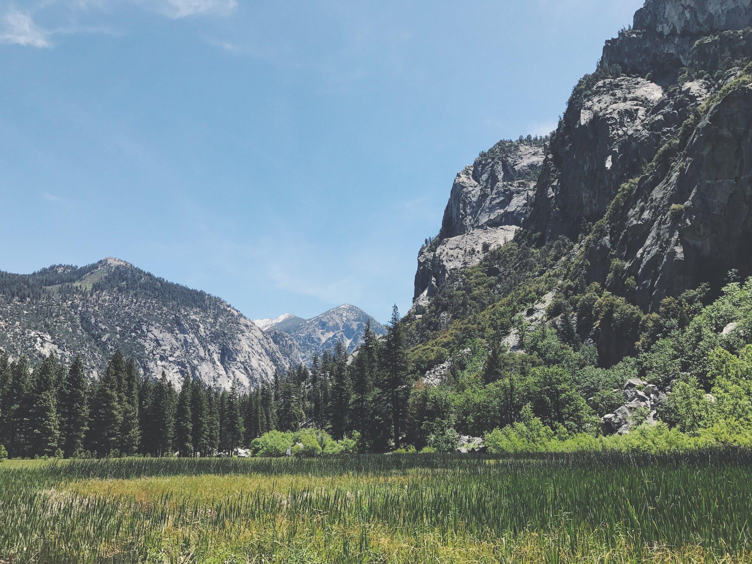 View across Zumwalt Meadow in Kings Canyon National Park