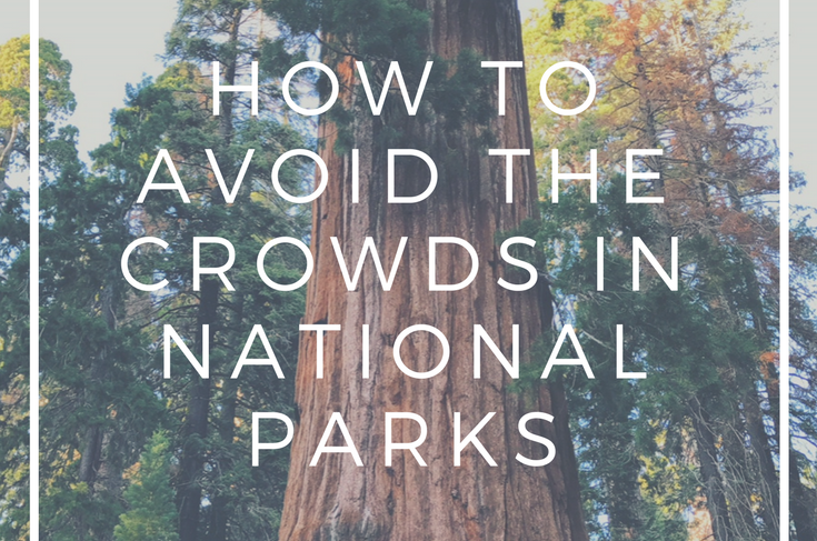 How to Avoid the Crowds in National Parks