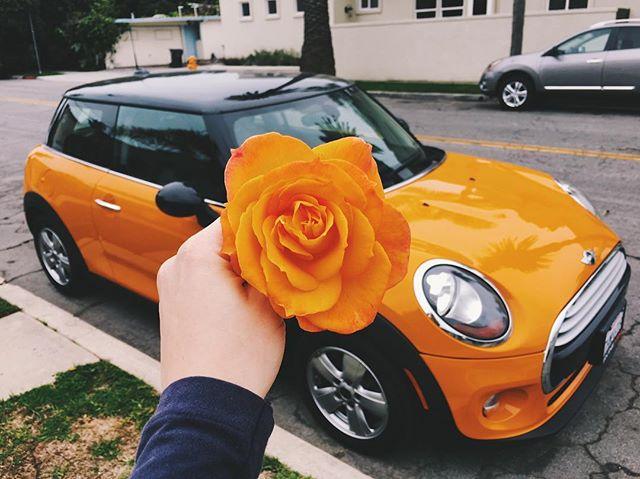 color matching is fun #orange #favoritecolor #huntingtonbeach #happysaturday