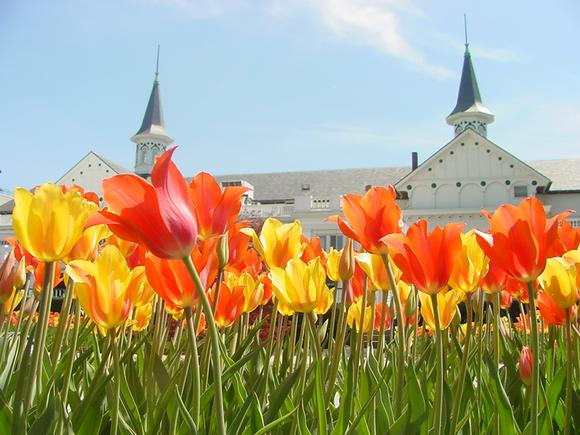 April Showers Bring May Flowers to Churchill Downs, Louisville, Kentucky