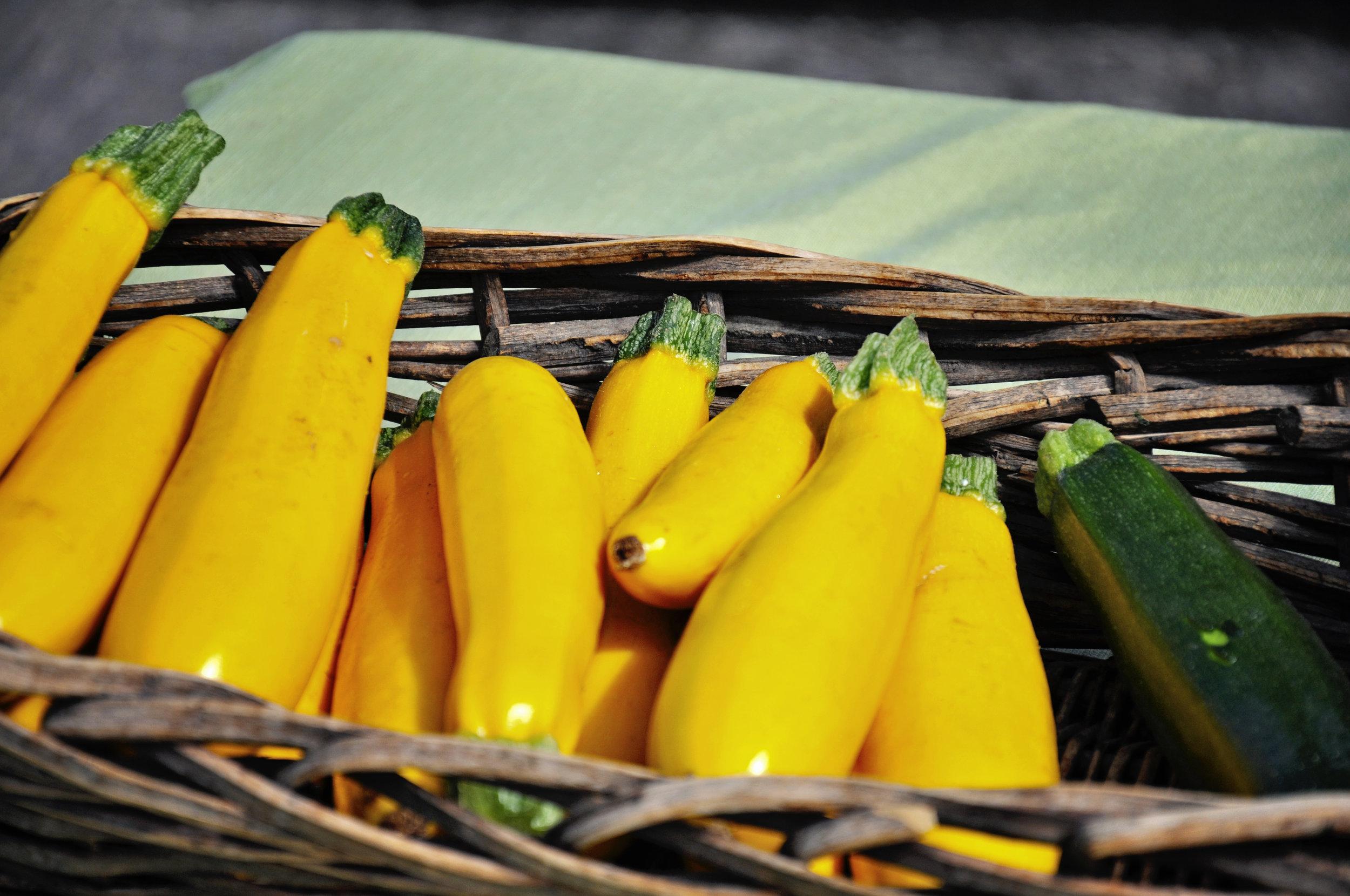Fresh Farmers Market Squash and Zucchini