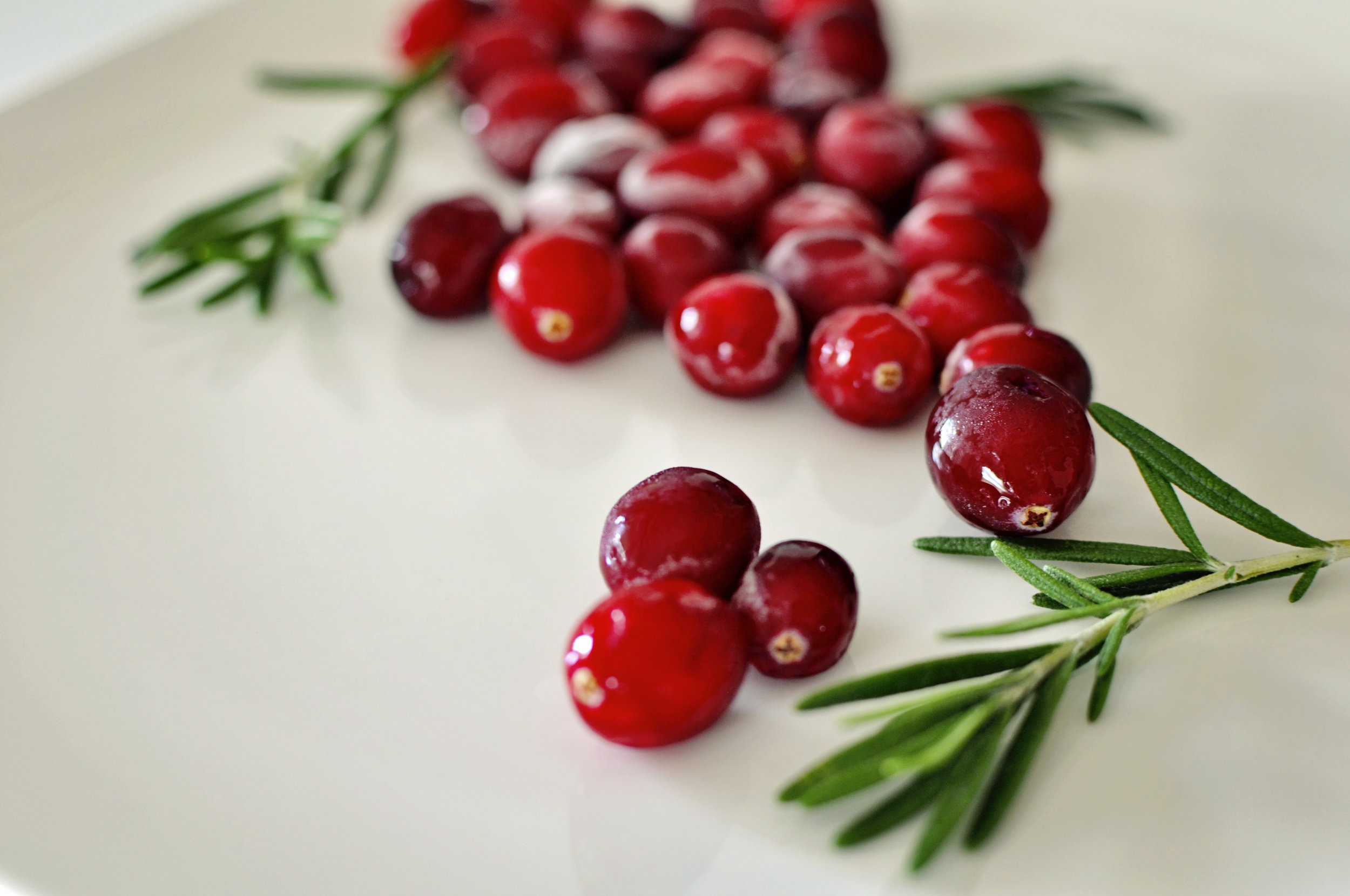 3FestiveHolidayCranberries4 copy.jpg