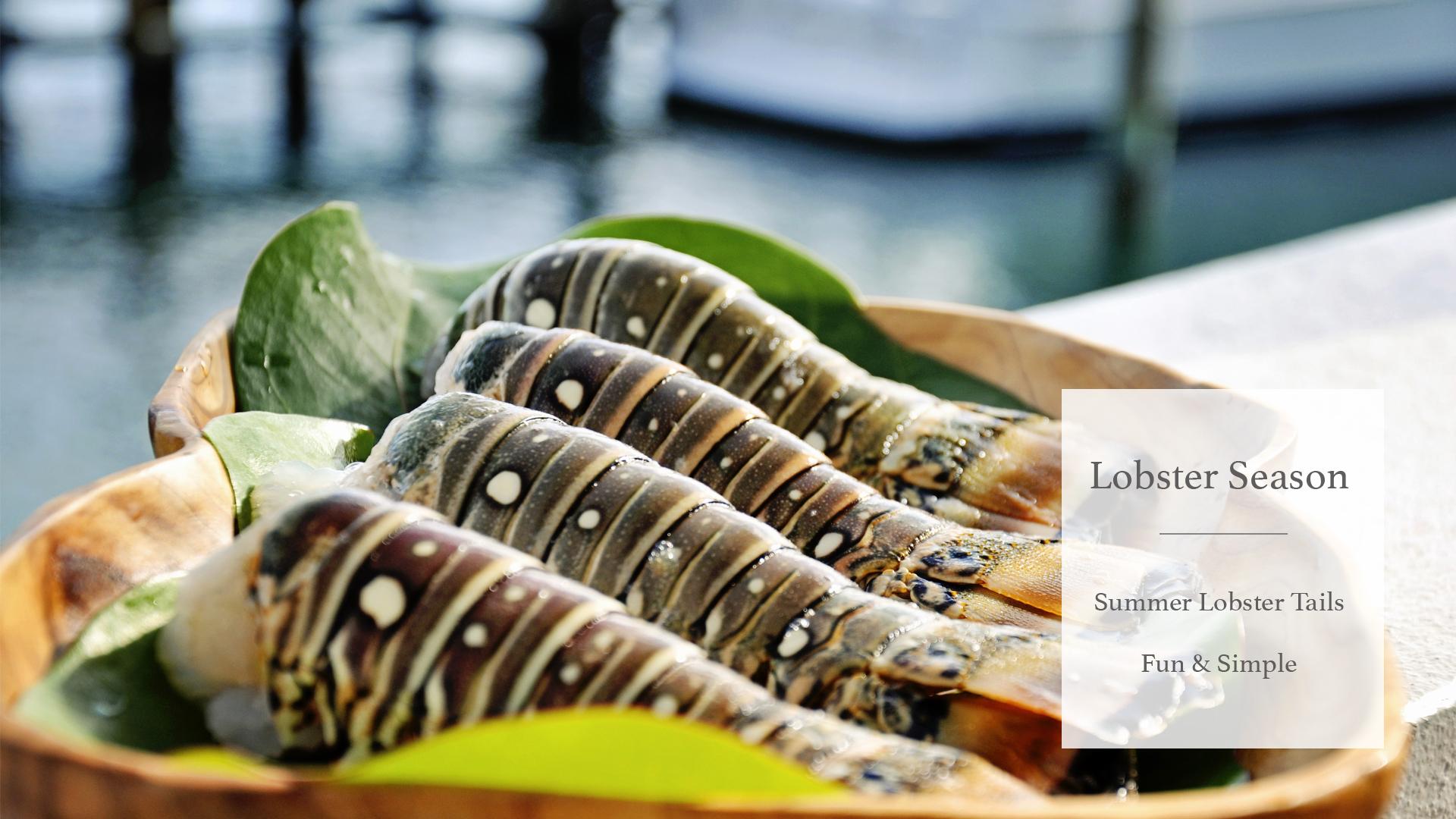 LobsterSeasonSlide copy.jpg