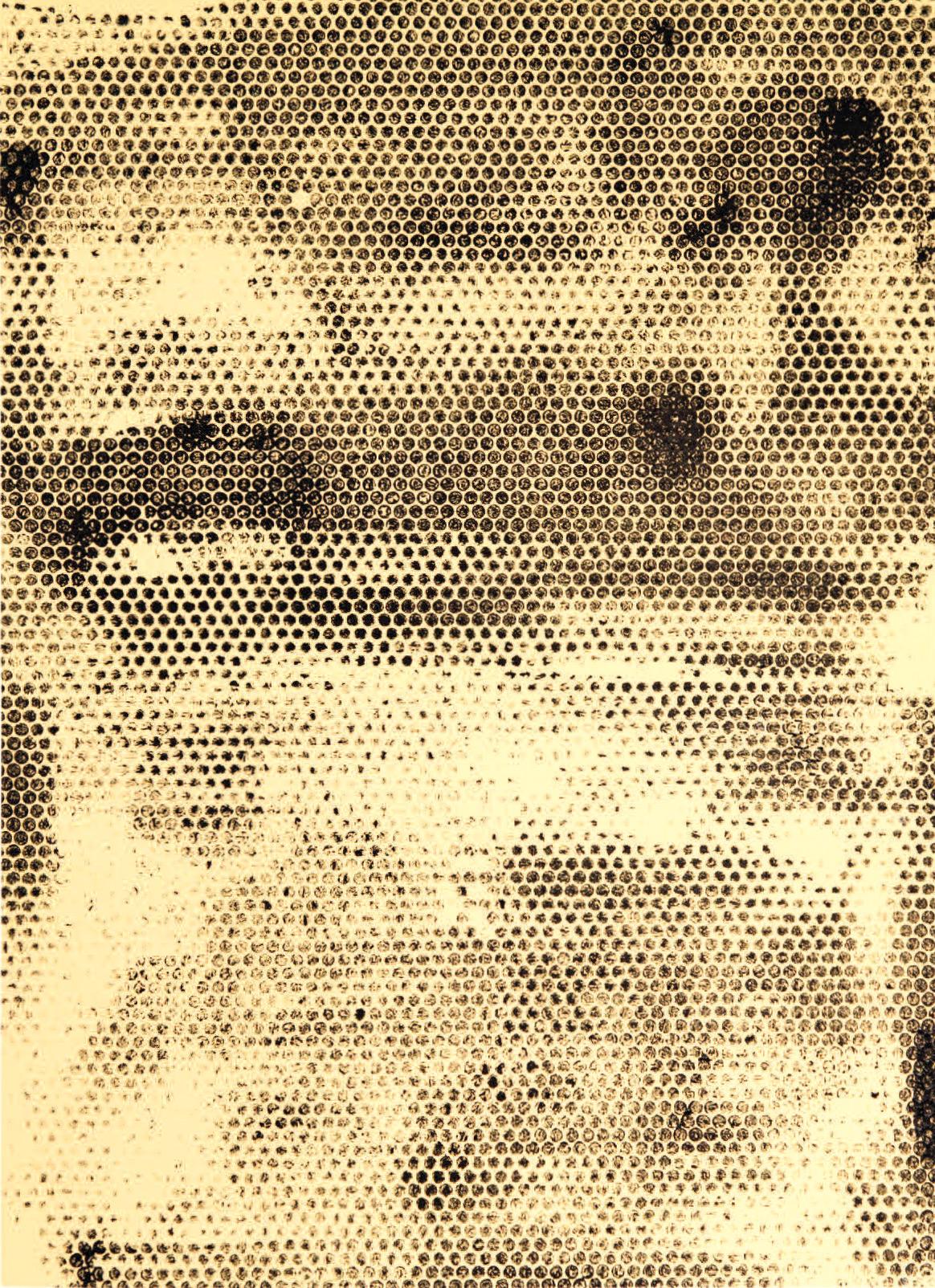 """SMALL BUBBLE COMMUNITY I.    Acrylic on Canvas.  2014.     30"""" x 40""""."""