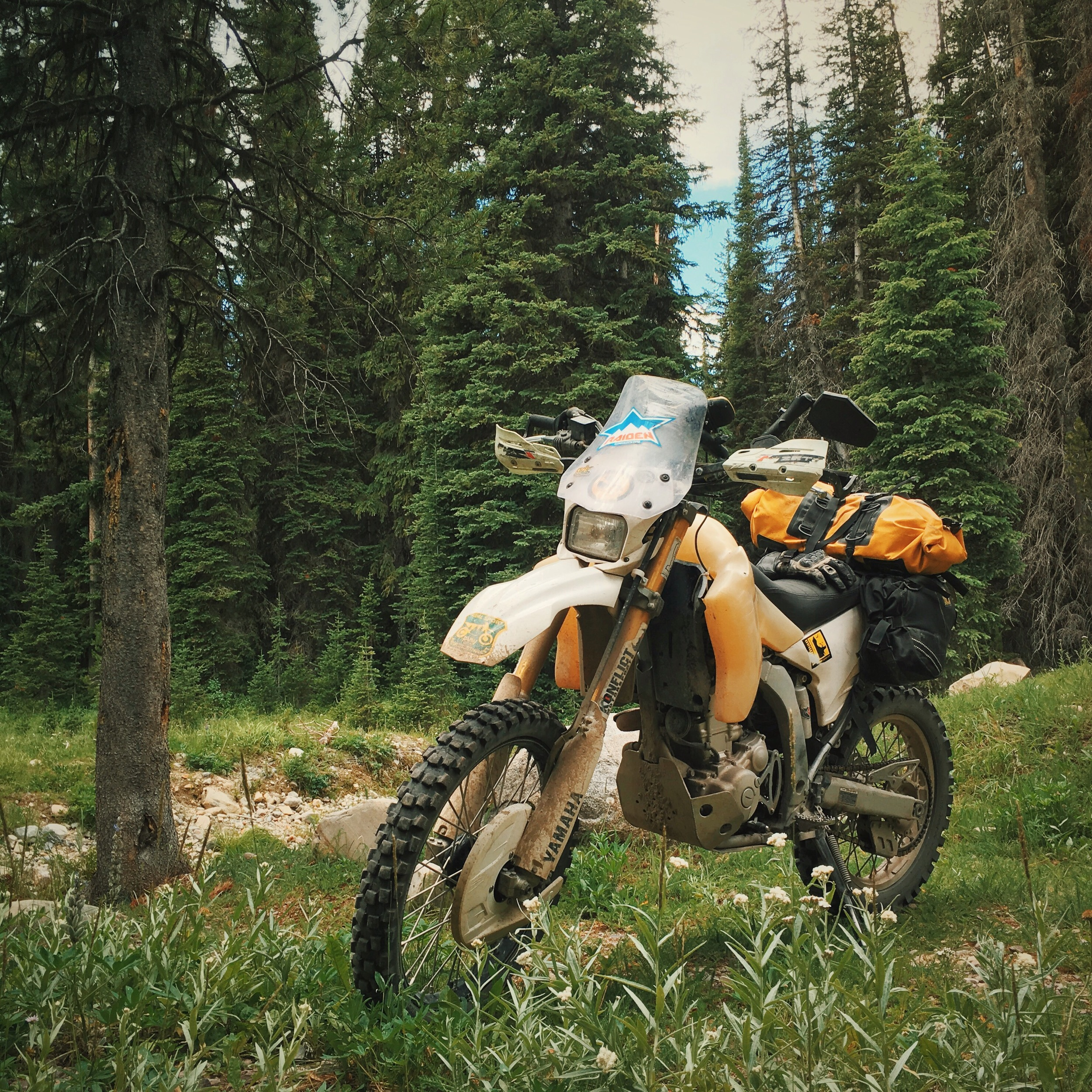 Skalkaho Road, Bitterroot Forest, Montana. This is the quickest route from Butte to Corvallis and the perfect way to roll into Rocky Mountain Roll.🌲🚲🌲
