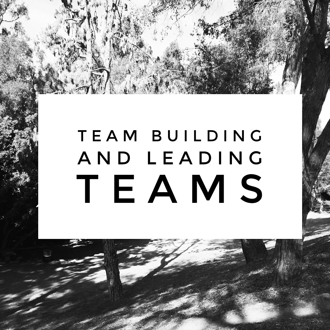 Team Building and Leading Teams