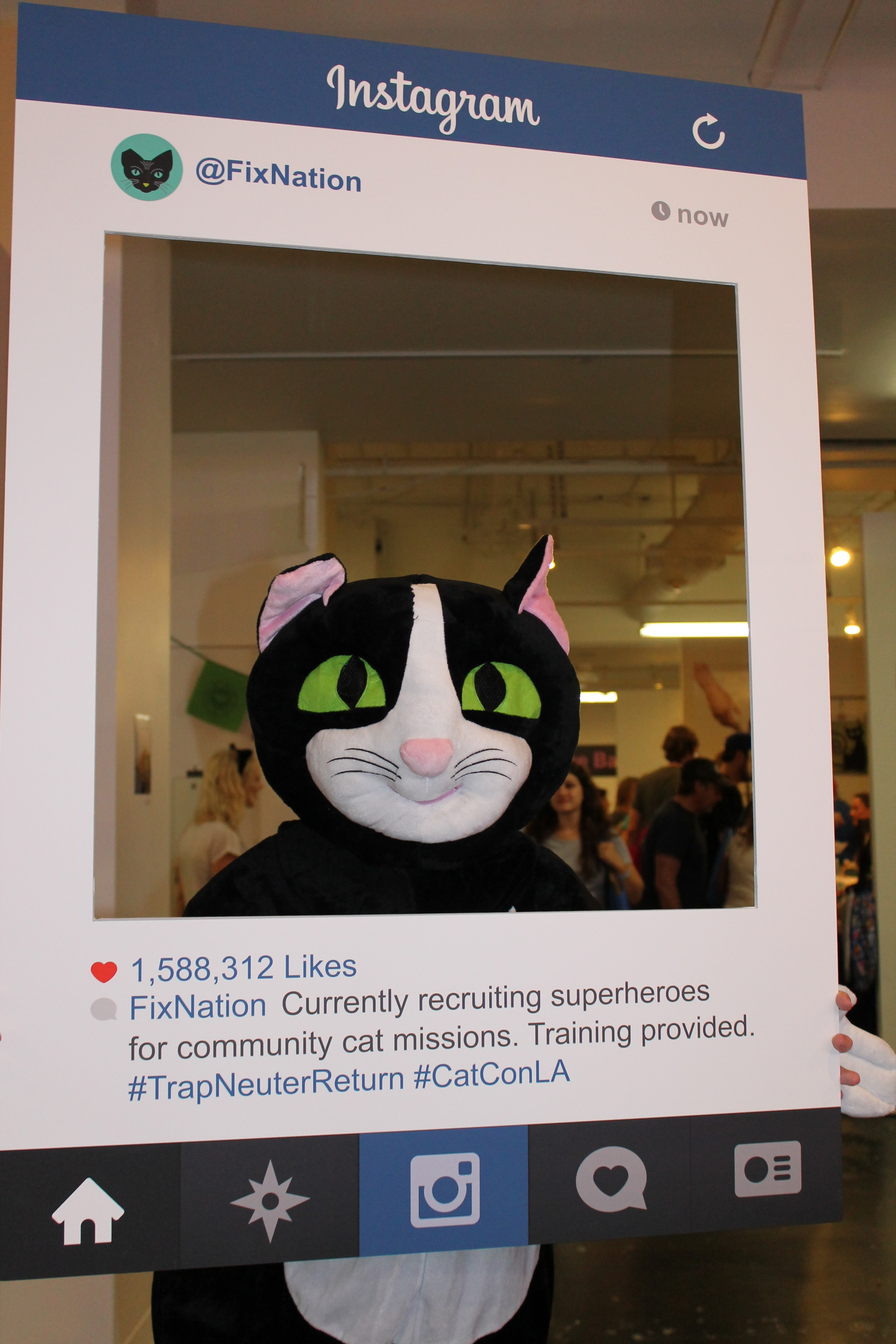 FixNation Cat, looking for LA Superheroes for cats.