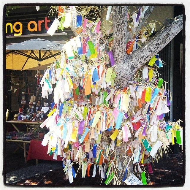 A tree bristling with wishes in the LT. (c)2014 Michelle Klein-Hass