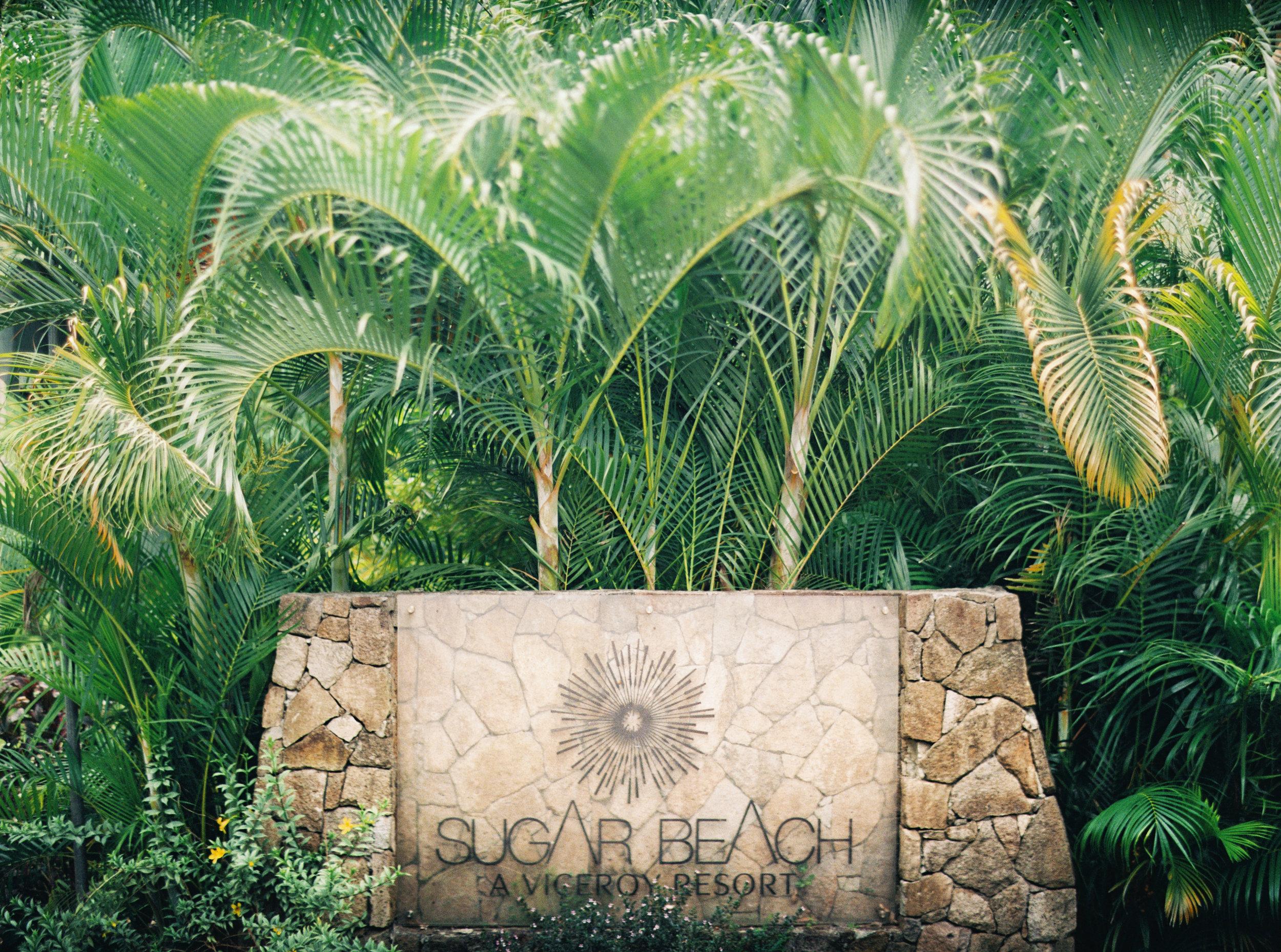 003Delmary's & Daniel : ELOPEMENT : ST. LUCIA : CARIBBEAN : PHOTO & VIDEO : DESTINATION : OUTLIVE CREATIVE : 2016 .jpg