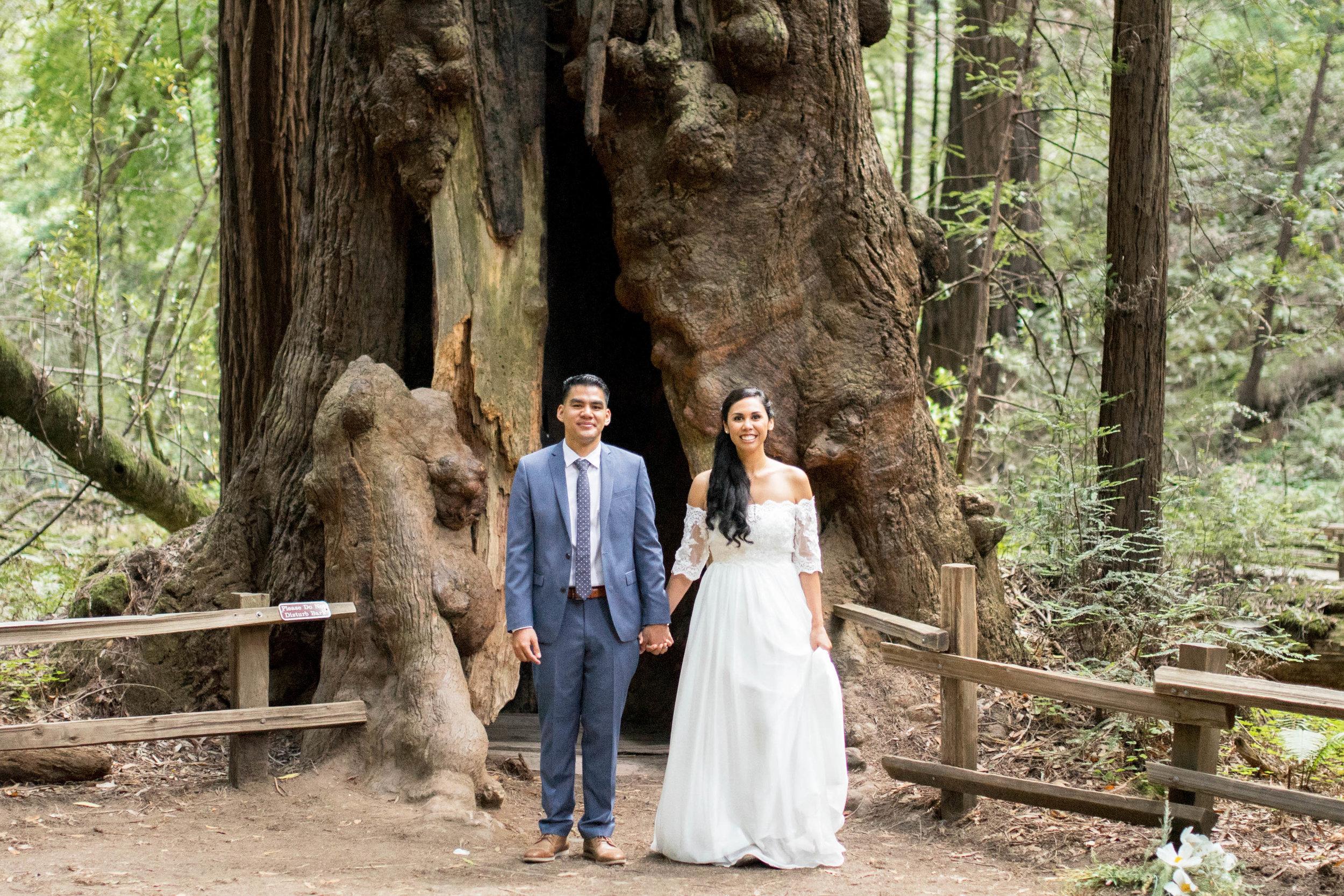 008_Krysten-Crebin-Muir-Woods-Elopement-Wedding-Photographer.jpg