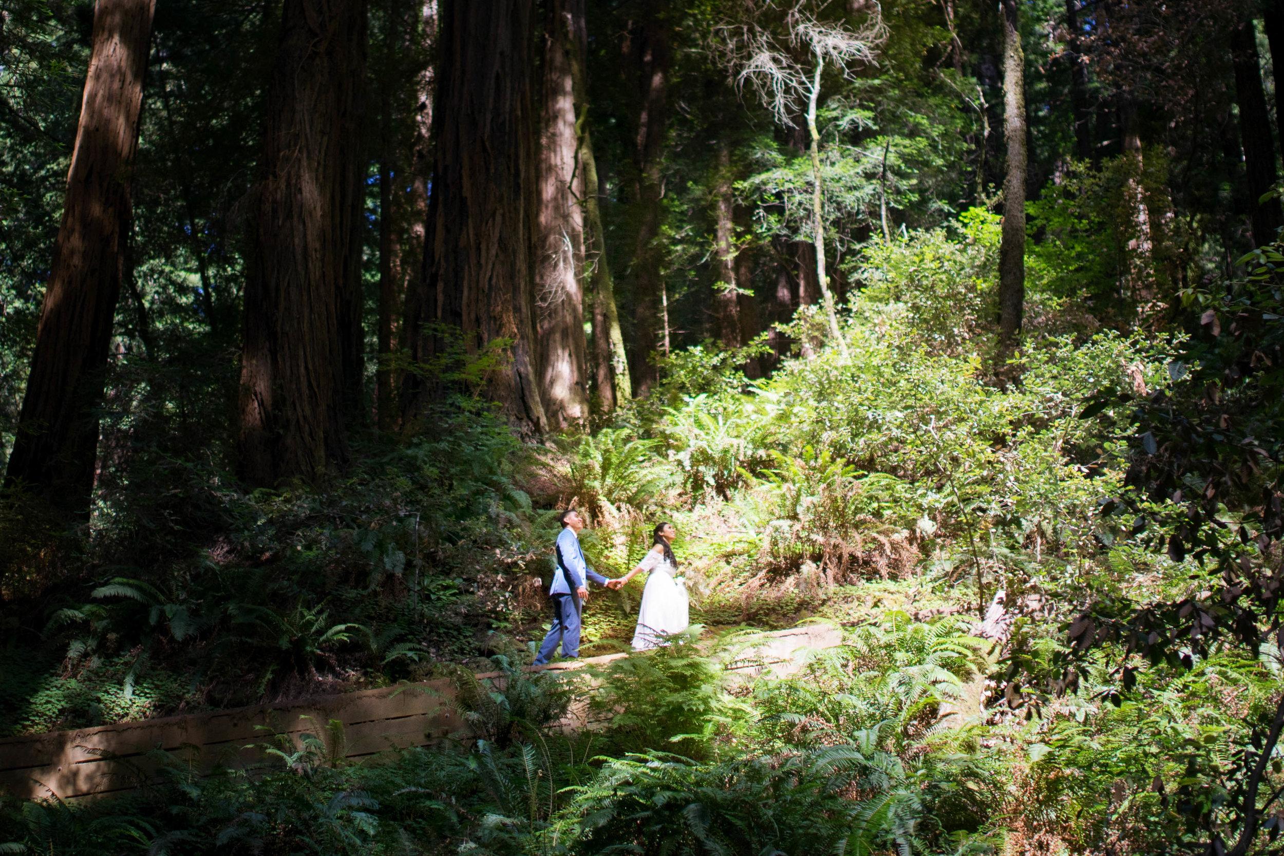 011_Krysten-Crebin-Muir-Woods-Elopement-Wedding-Photographer.jpg