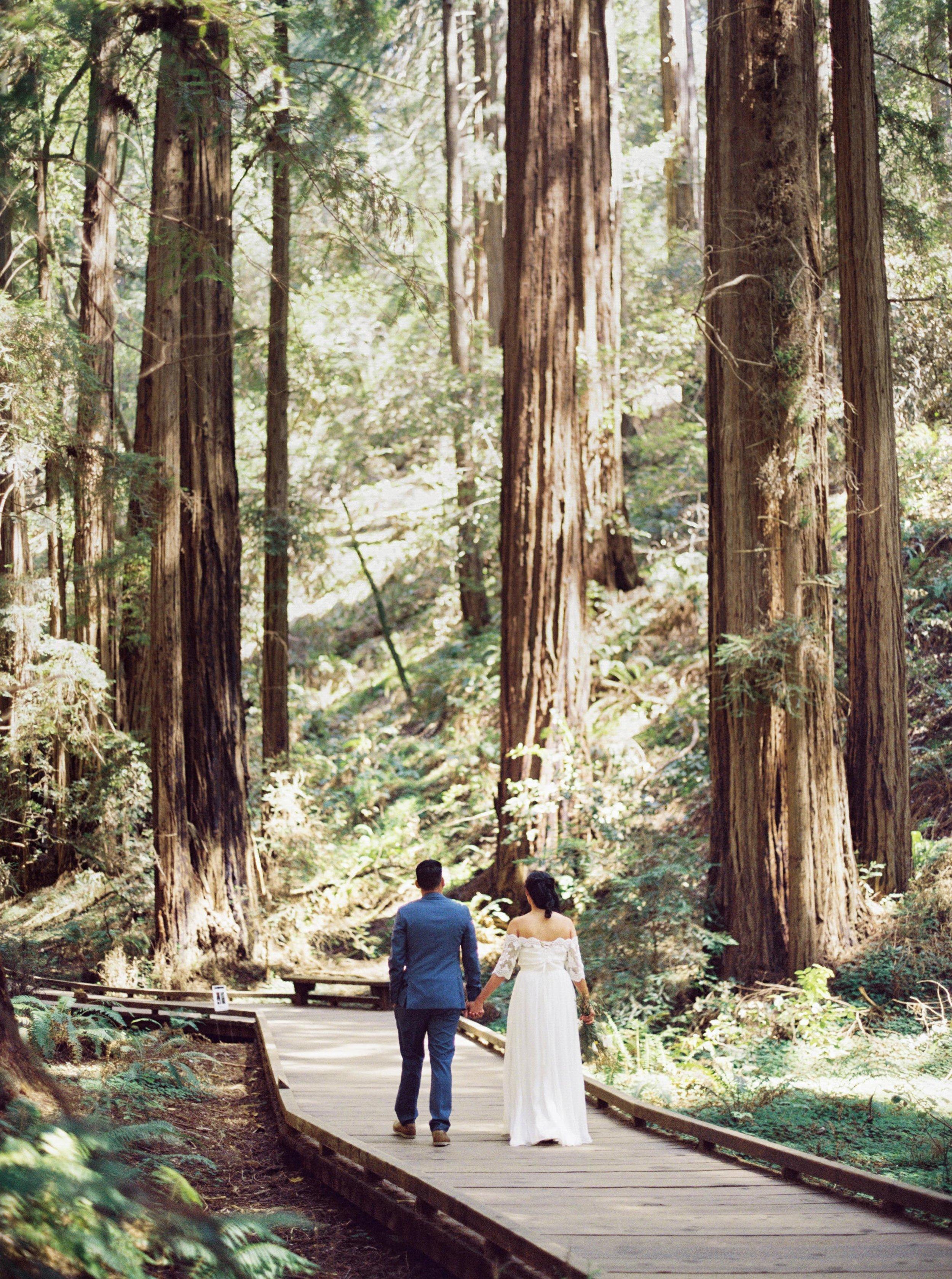 016_Krysten-Crebin-Muir-Woods-Elopement-Wedding-Photographer.jpg