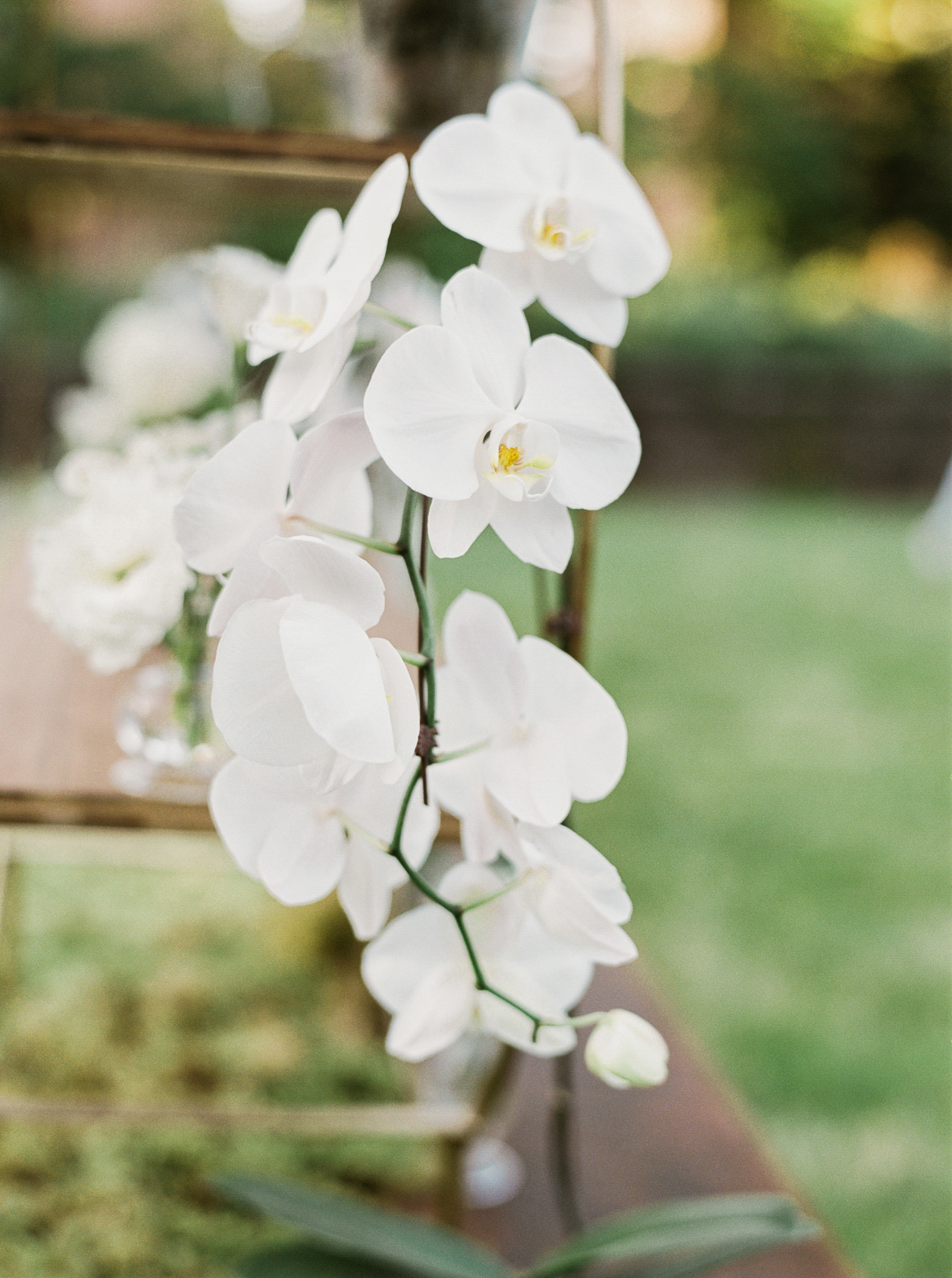 192OutliveCreative_Travel_Photographer_Videographer_Lewis&Clark_Oregon_Elegant_BlackTie_Destination_Wedding.jpg