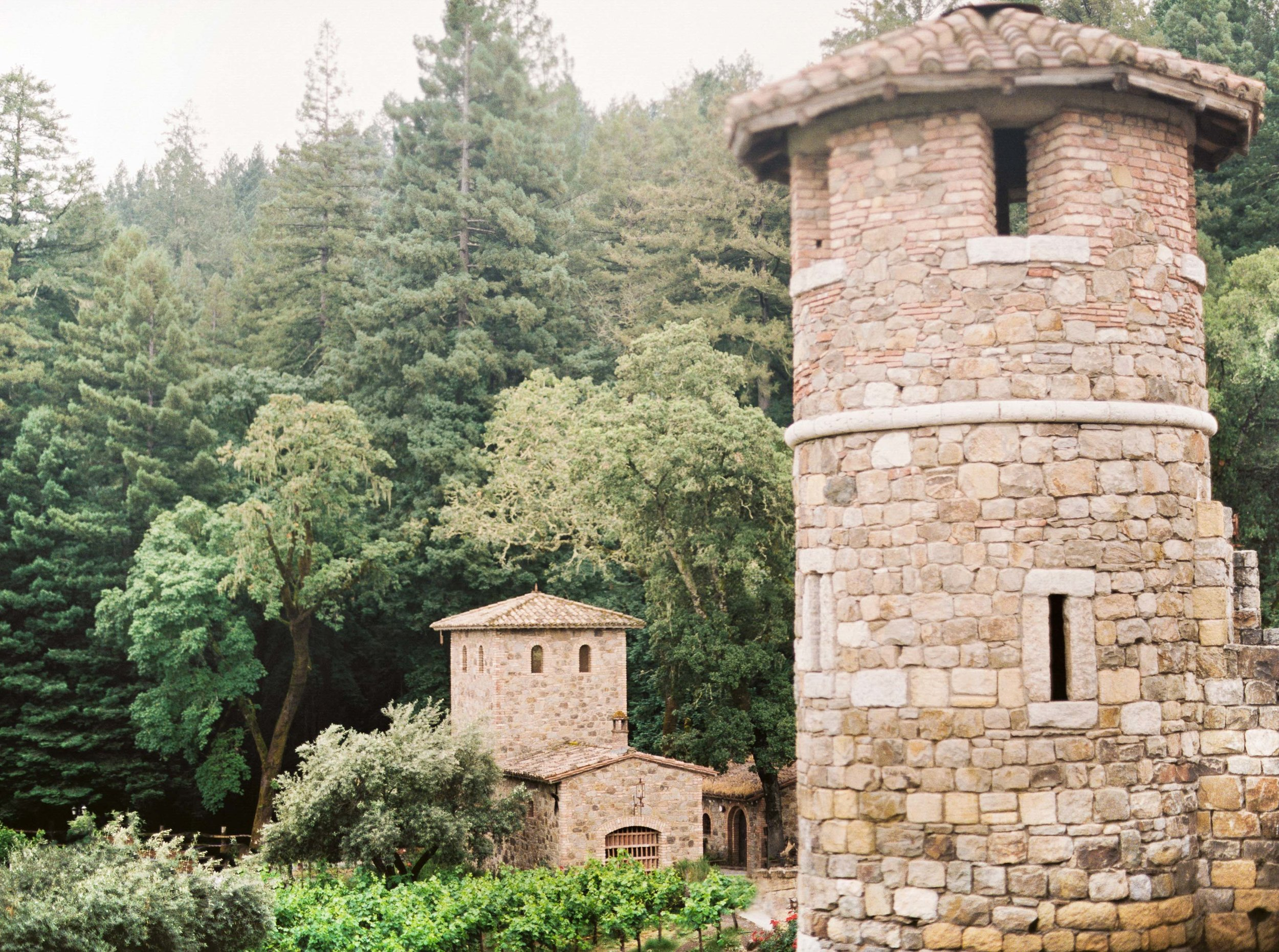 045napa_wedding_photographer_and_videographer_destination_and_elopement_photography.jpg