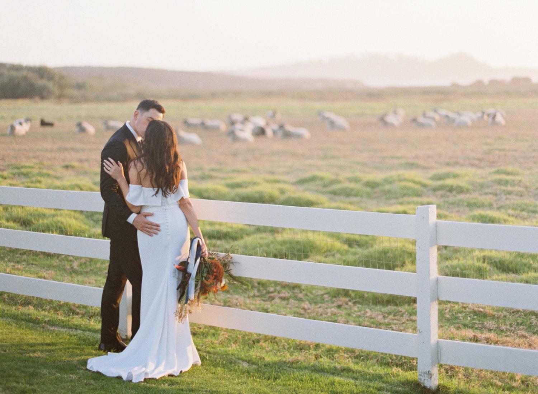 107carmel_california_destination_wedding_photography_wedding_videography_mission_ranch.jpg