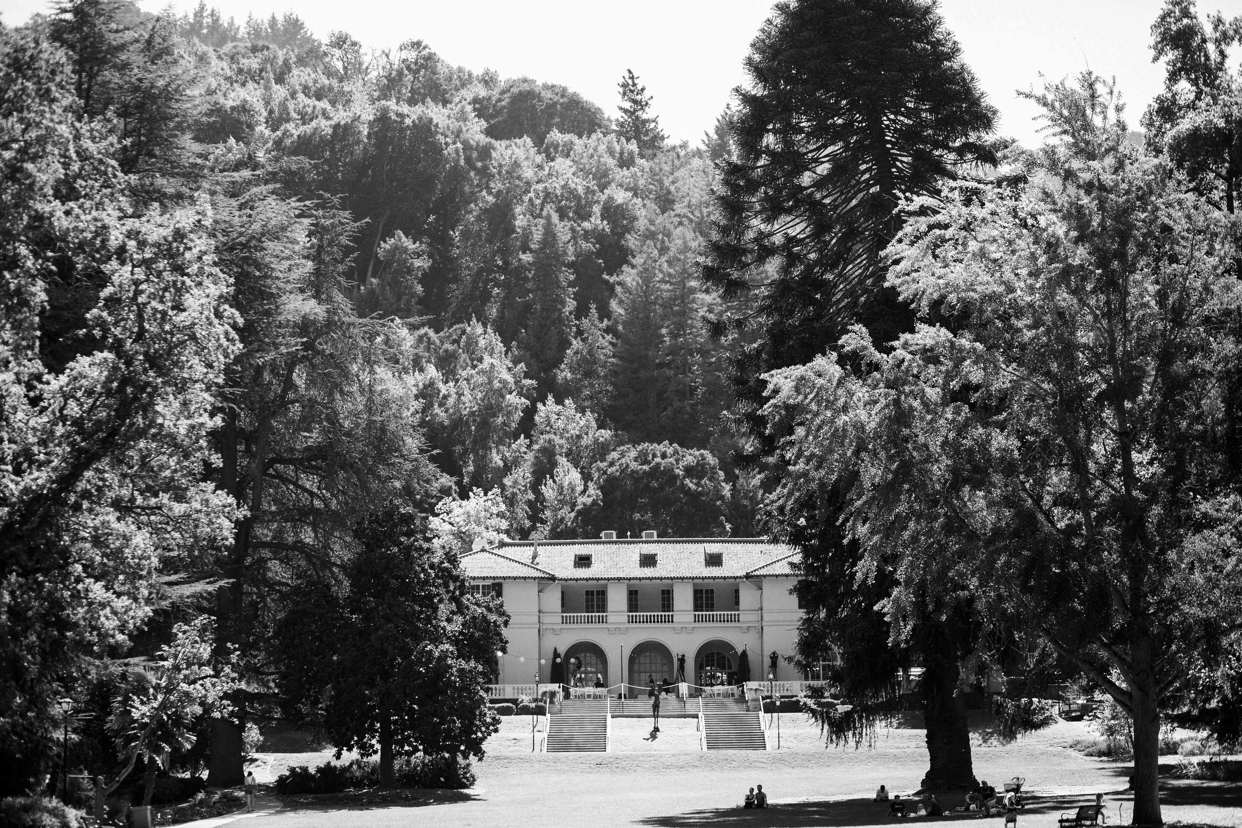 Villa_Montalvo_Wedding_Photographer_Videographer_San_Francisco063.jpg