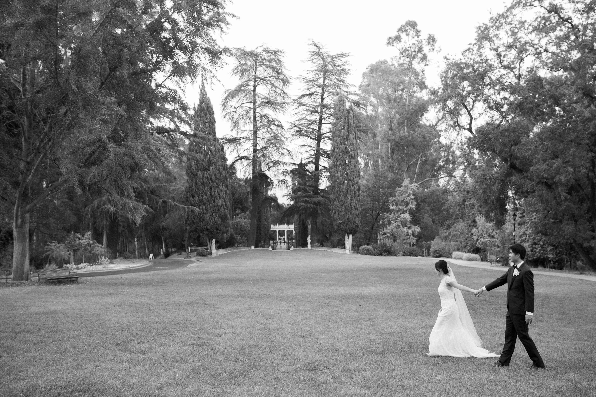 Villa_Montalvo_Wedding_Photographer_Videographer_San_Francisco190.jpg