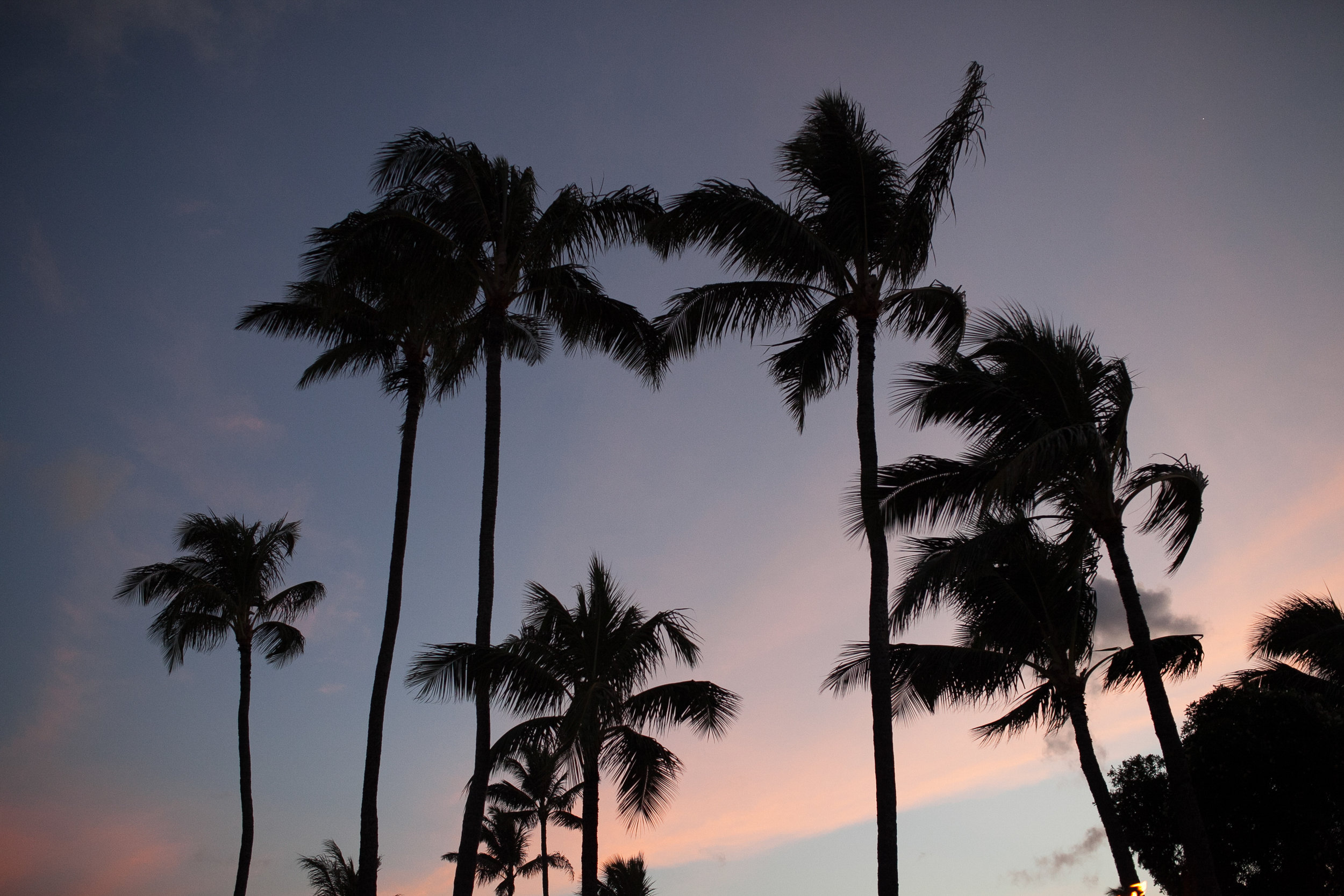 004Travel_Adventure_Photography_Outlive_Creative_Hawaii.jpg