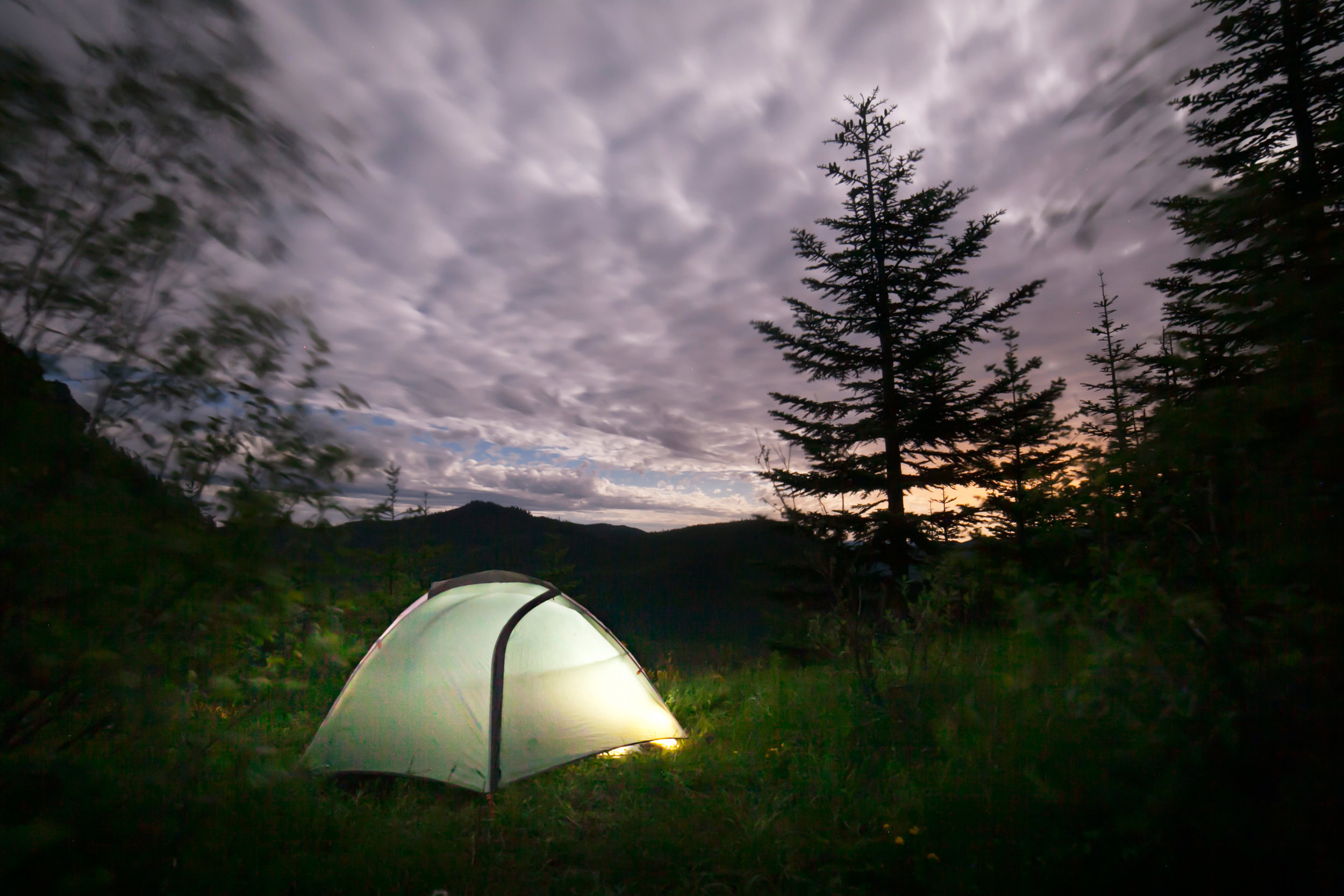 077Travel_Adventure_Outdoor_Photography_Outlive_Creative_WASHINGTON_St. Helens_Dog_Tent_Camping.jpg