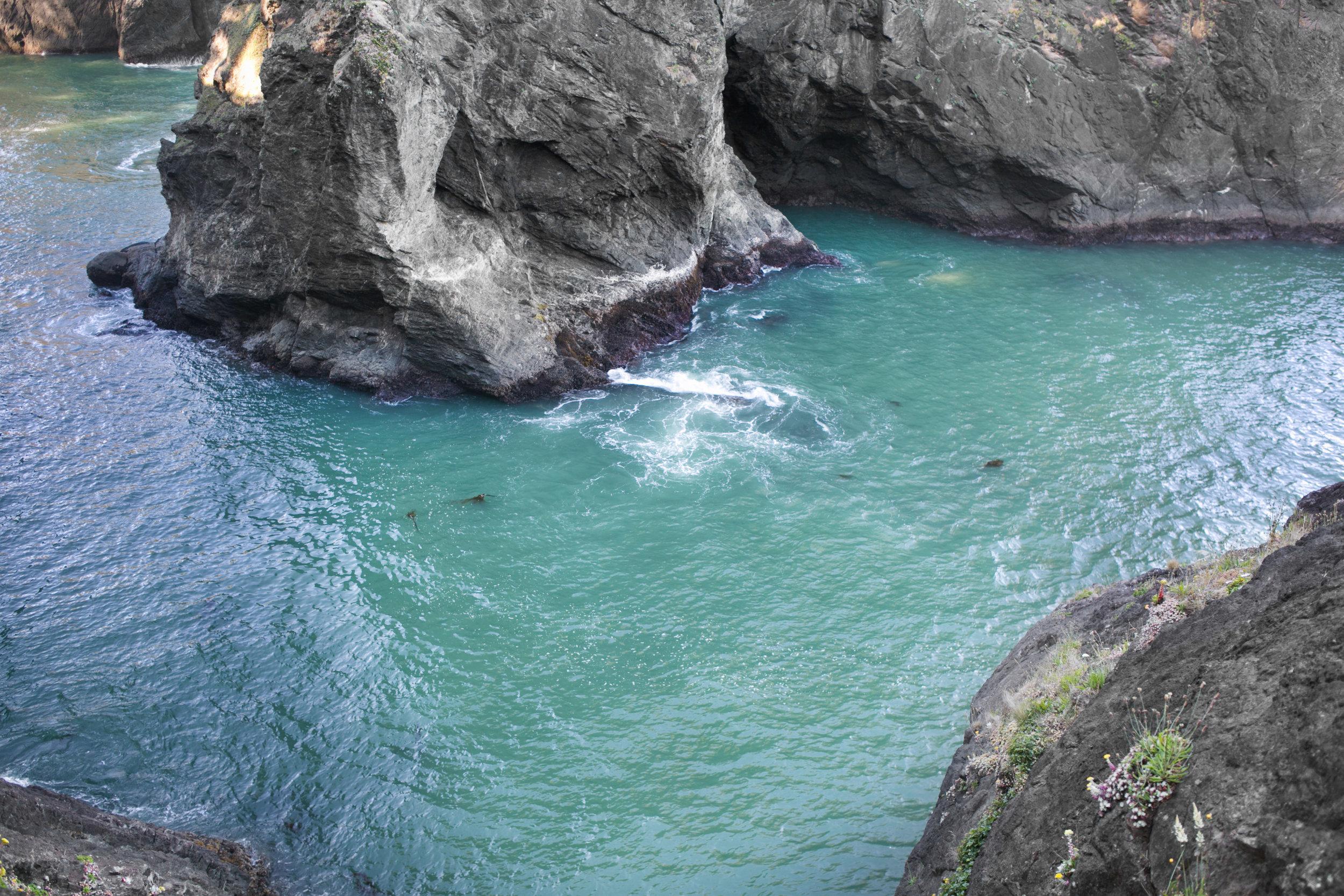 096Travel_Adventure_Outdoor_Photography_Outlive_Creative_Oregon_Coast_Samuel H Boardman State Park.jpg