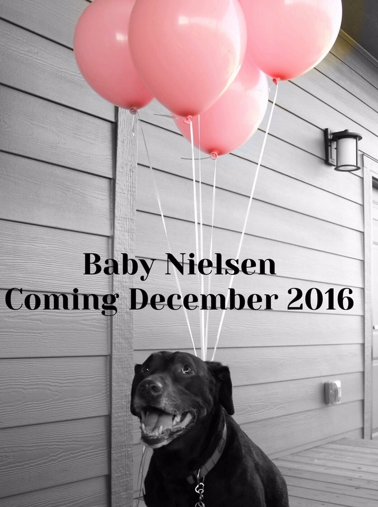 abby baby announcement