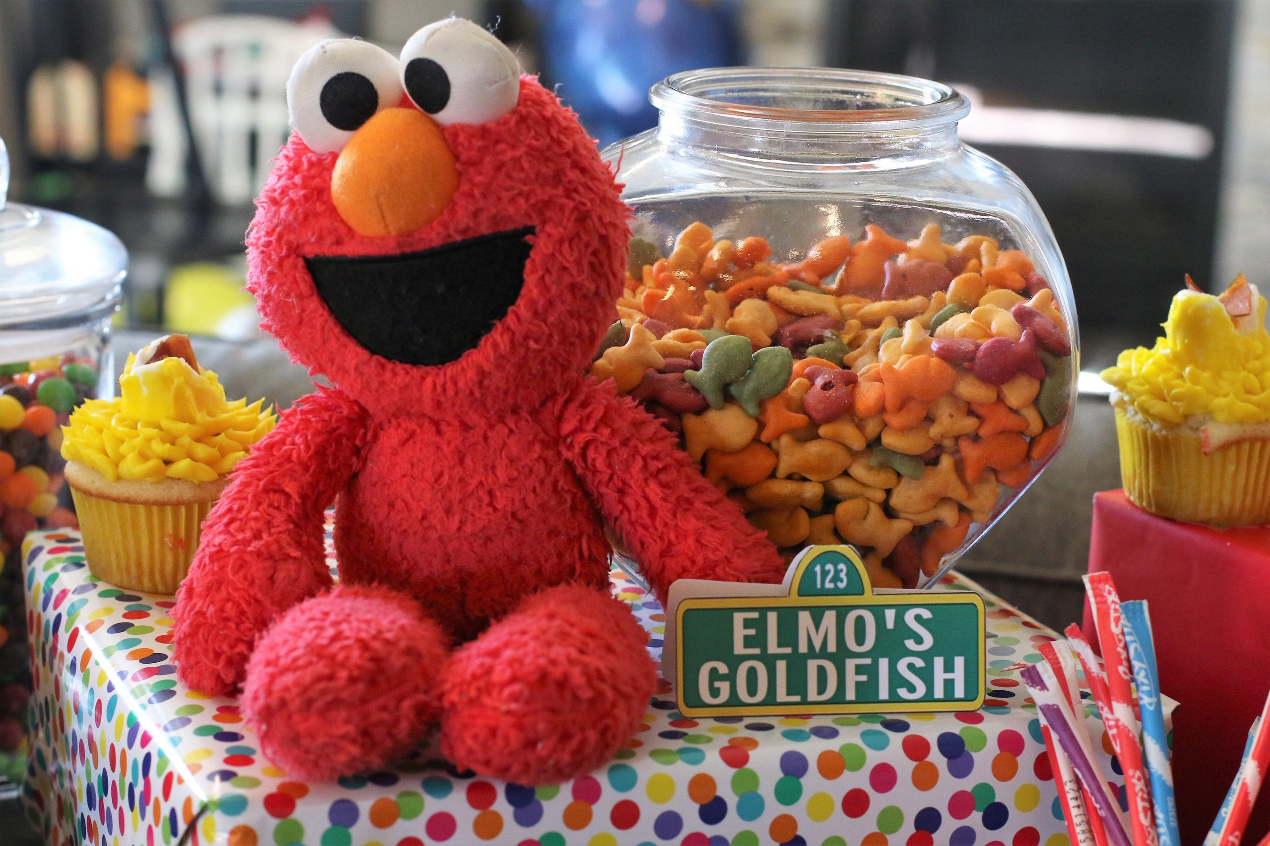 Elmo with his Goldfish. If you've seen Sesame Street, you know Elmo has a pet fish named Dorothy.