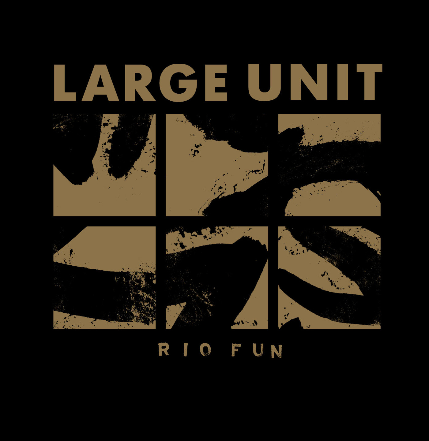 large-unit-rio-fun.gpg