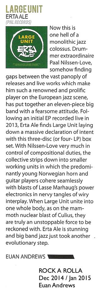 large-unit-erta-ale-rock-a-rolla-review.jpg