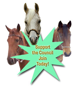 Join Vermont Horse Council