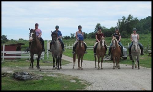 Kimberly Farms  1214 Cross Hill Rd North Bennington, VT 05257 p: (802) 442-5454 w:  kimberlyfarms.org  e: info@kimberlyfarms.org