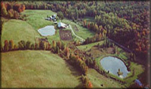 Tamarack Hill Farm   166 Brook Rd.  Stratford, VT 05072  p: (802) 765-4049  w:  www.tamarackhill.com  e: denny@tamarackhill.com