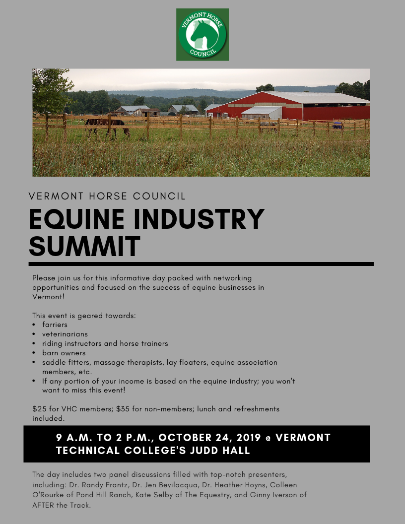 2019 Summit Flyer- image.png