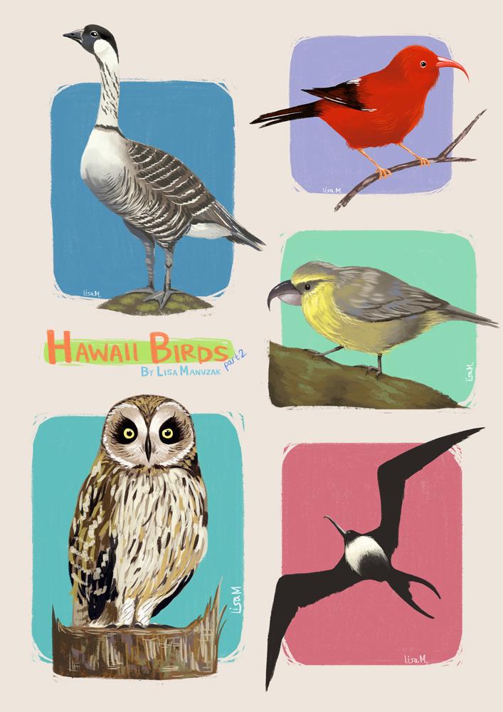 hawaiibirds2.jpg