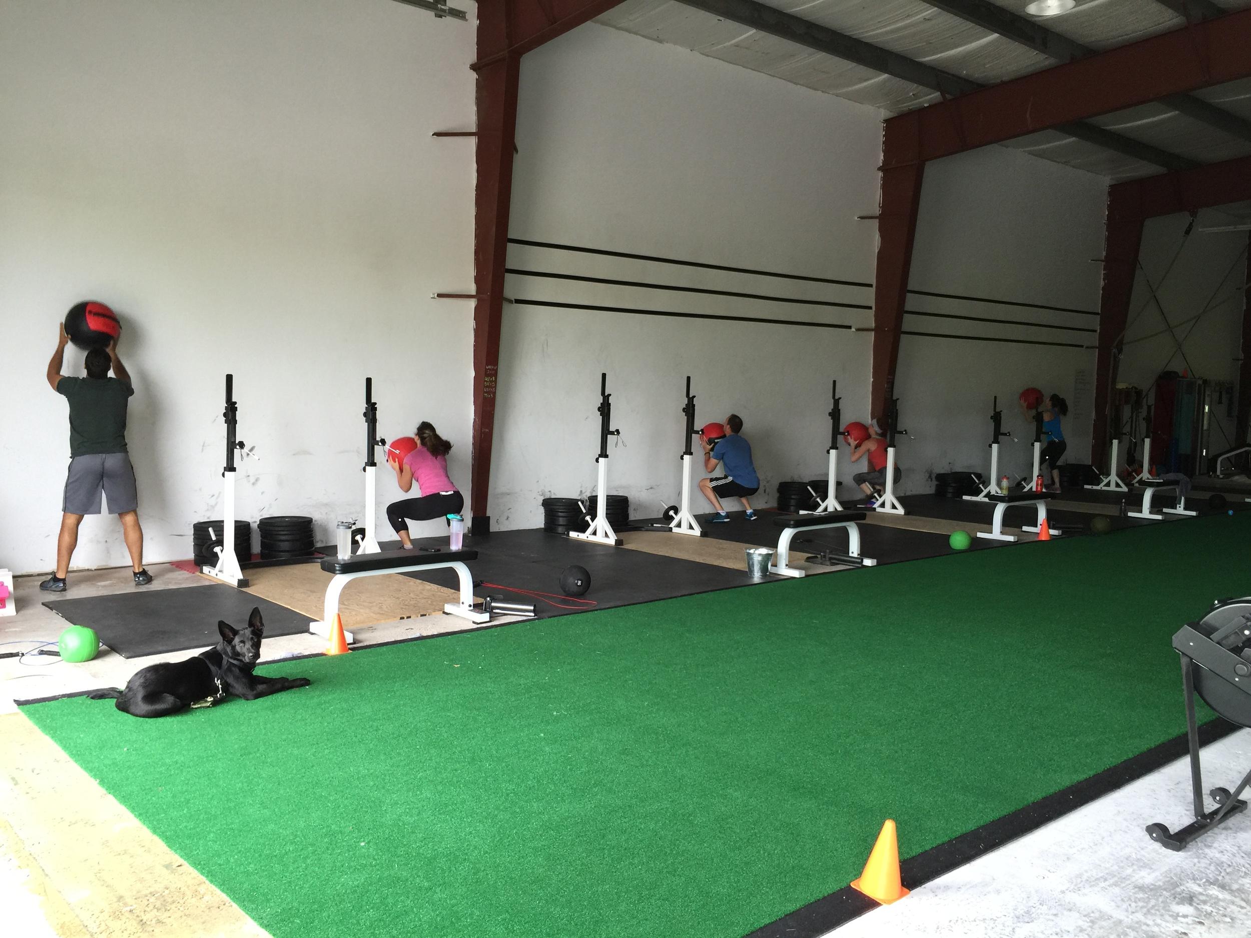 gym-fitness-training-kingston-wall ball