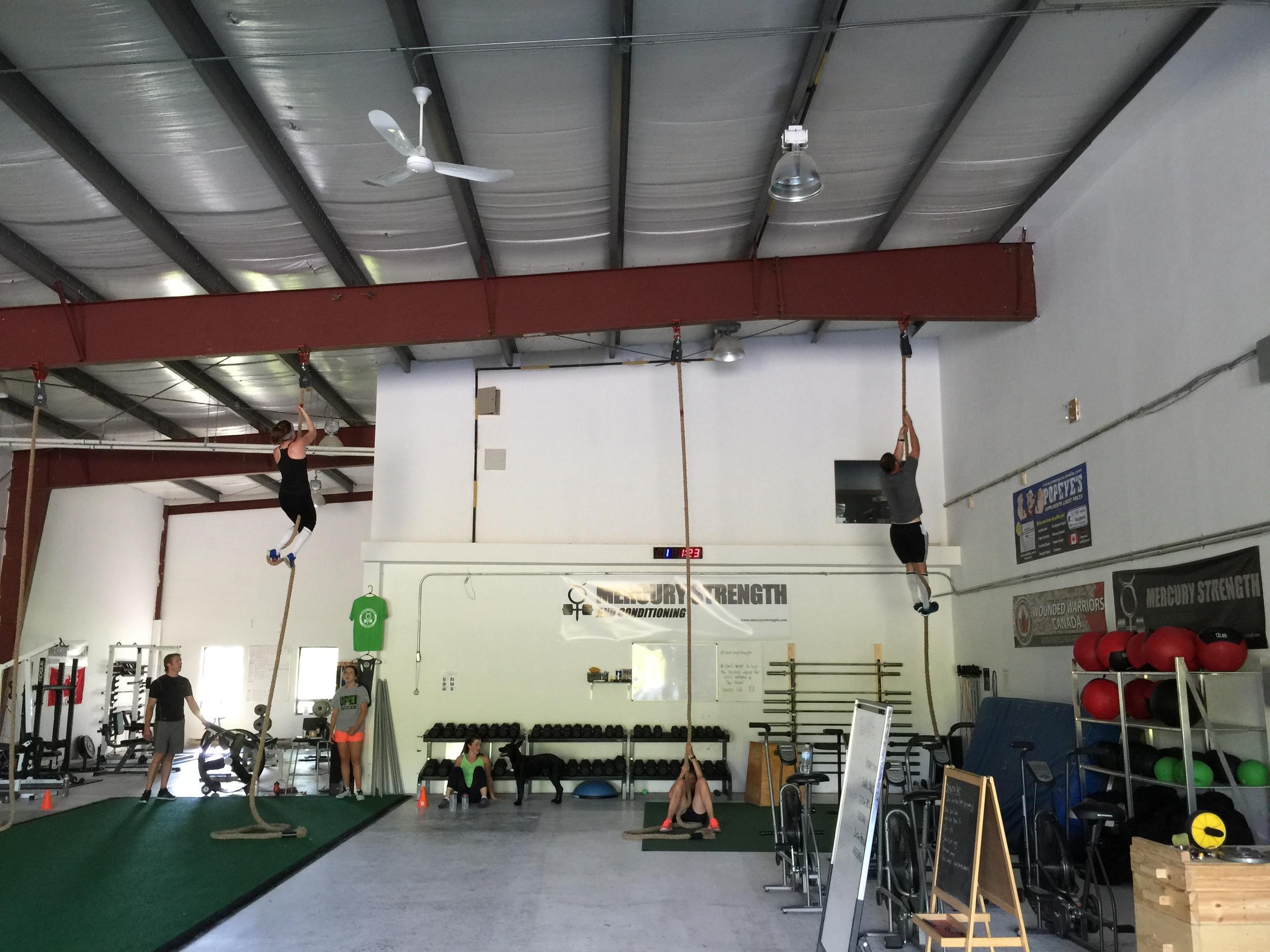 gym-fitness-training-bootcamp-kingston-rope climb