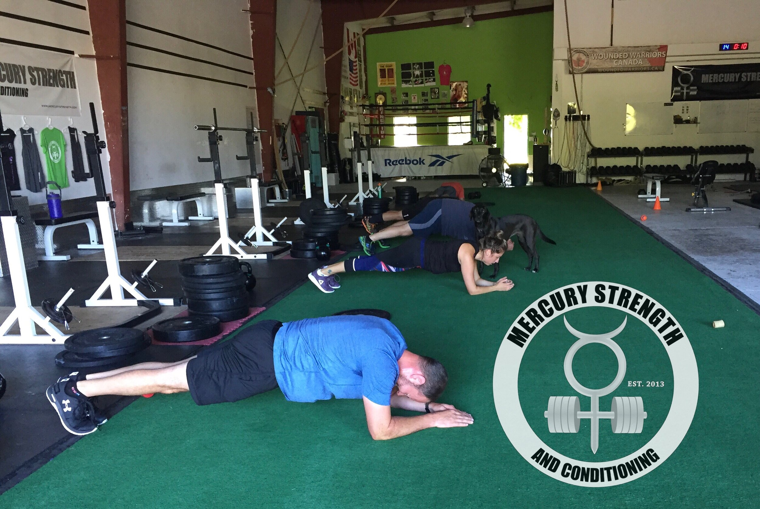 Gym-powerlifting-Olympic lifting-fitness-personal training-training-bootcamp-crossfit-kingston-kingston gym-kids-mercury-strength-conditioning-athlete-plank