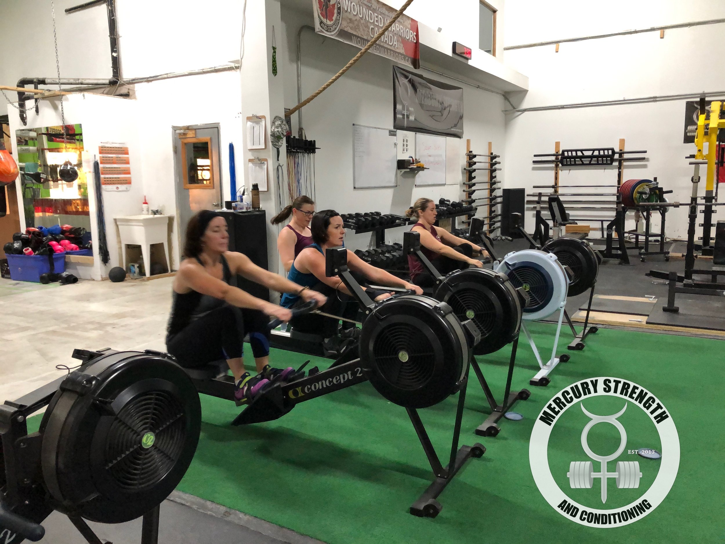 Gym-powerlifting-Olympic lifting-fitness-personal training-training-bootcamp-crossfit-kingston-gym-kingston gym-physique-body building-nutrition-kids-mercury-strength-conditioning-athlete-ontario powerlifting association-OPA-Canadian powerlifting federation-CPF-Row.JPG