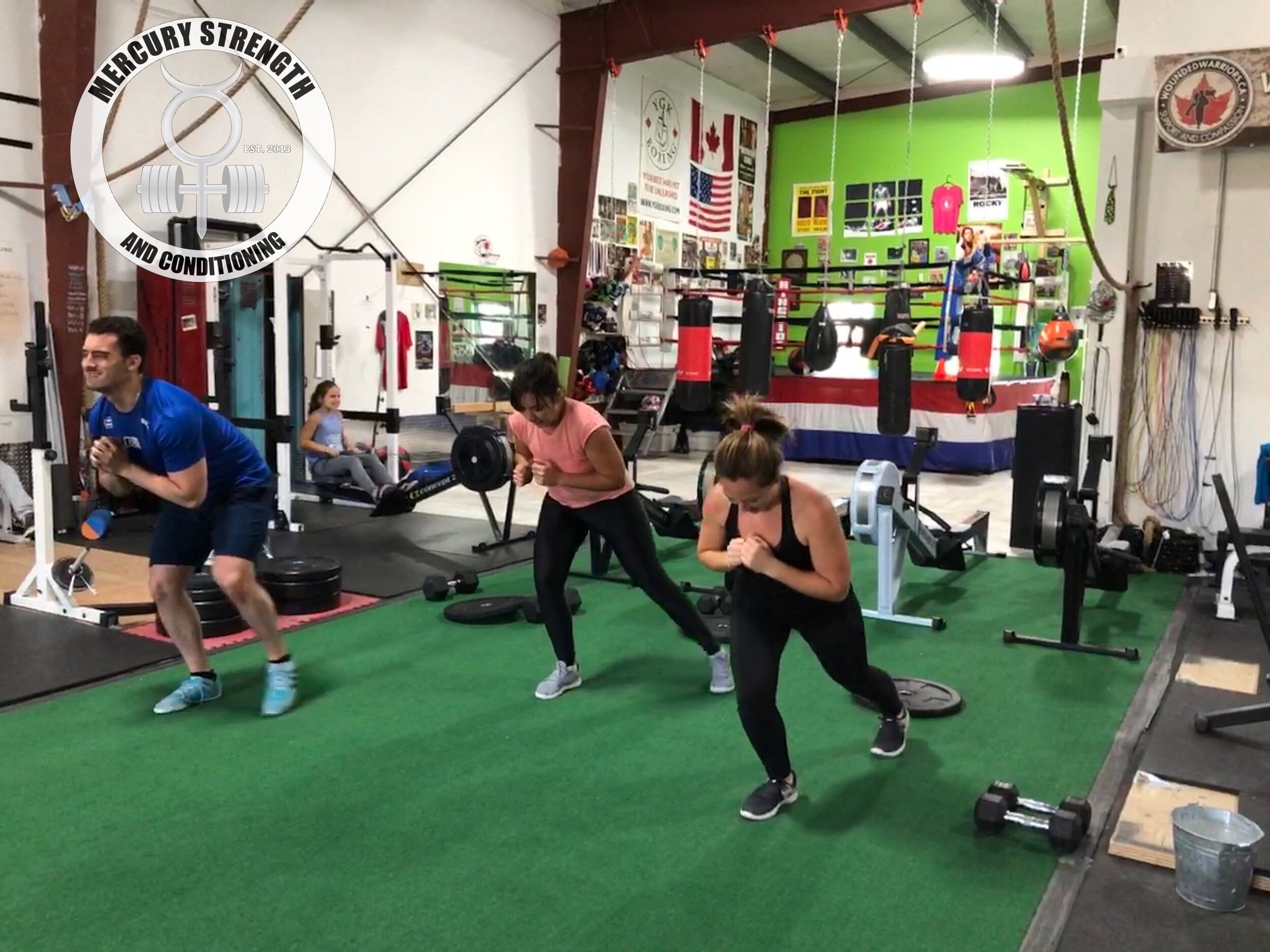 Gym-powerlifting-Olympic lifting-fitness-personal training-training-bootcamp-crossfit-kingston-gym-kingston gym-physique-body building-nutrition-kids-mercury-strength-conditioning-athlete-ontario powerlifting association-OPA-Canadian powerlifting federation-CPF-Skater Squats.JPG