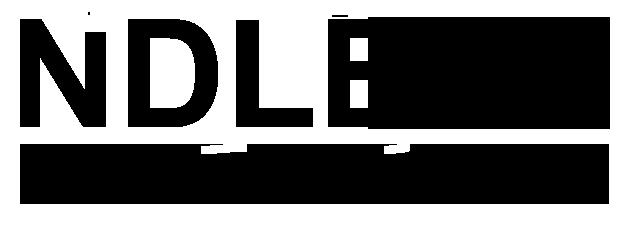 Ndless_logo_6.png