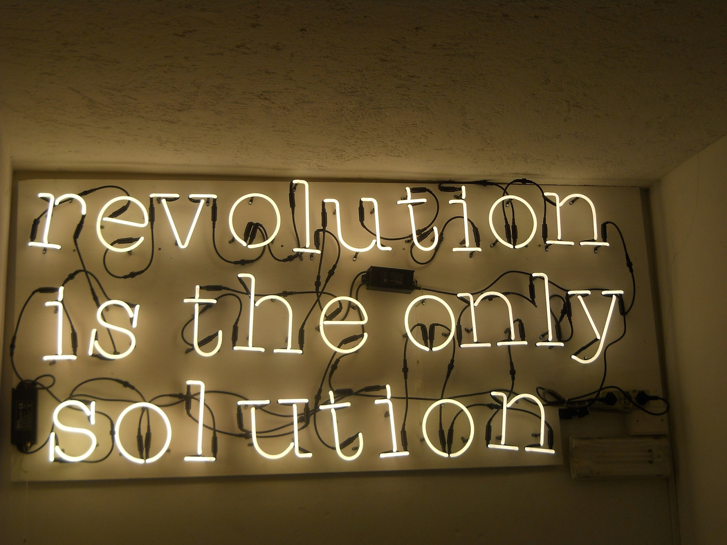 REVOLUTION IS THE ONLY SOLUTION