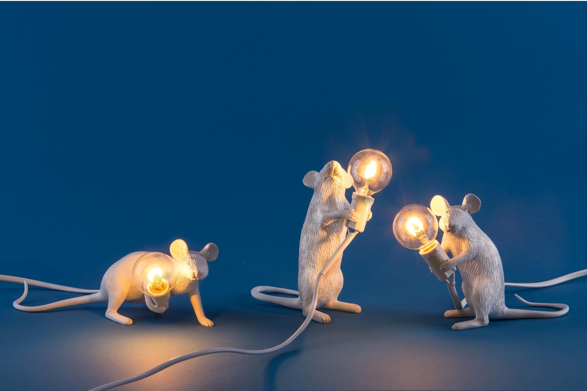 mice- mouse seletti.jpg