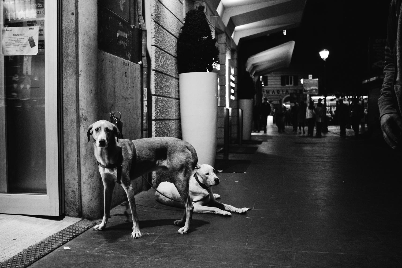 20160525-Italy(Rome)-0094.jpg